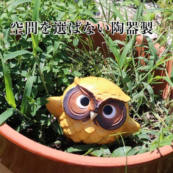 信楽焼 踊りフクロウ選べる4色 陶器フクロウ置物 縁起物 [fu-0156]