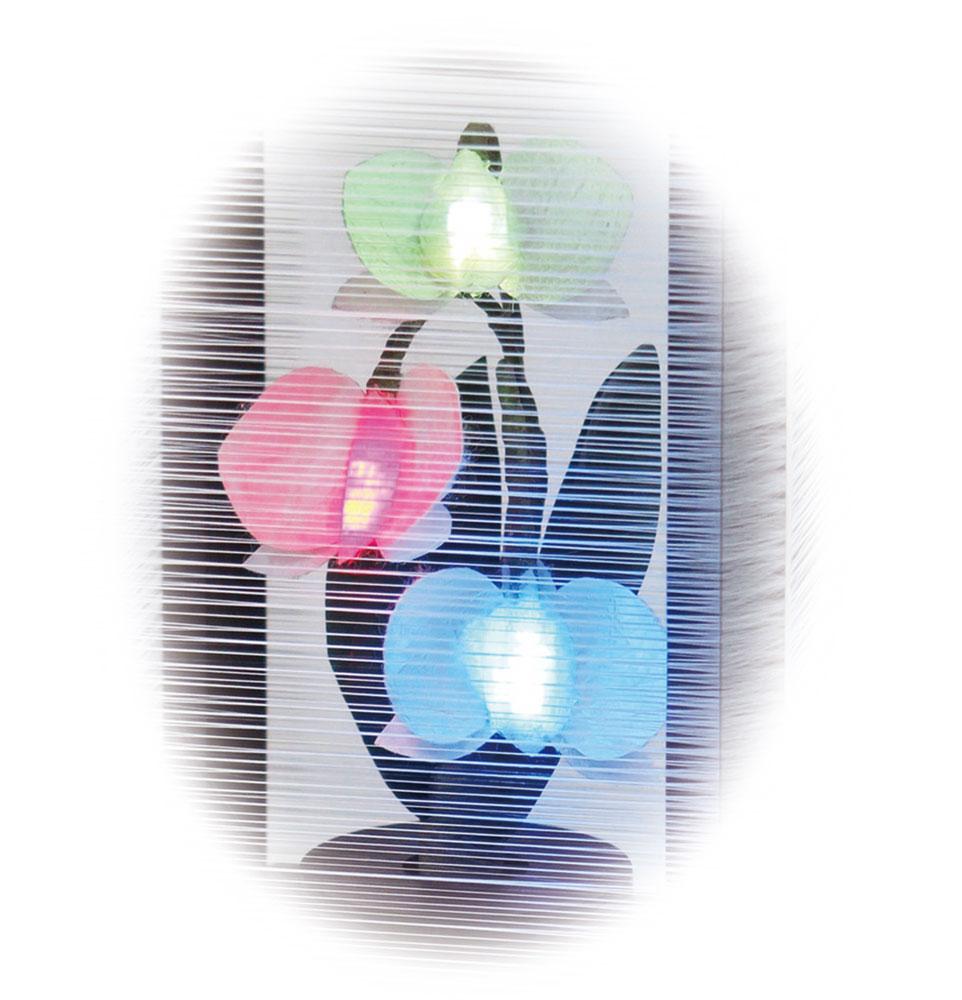 絹の舞 胡蝶蘭<br>初盆関連品 更に10%OFFクーポン対象商品<br>2021/06/20 23:59まで