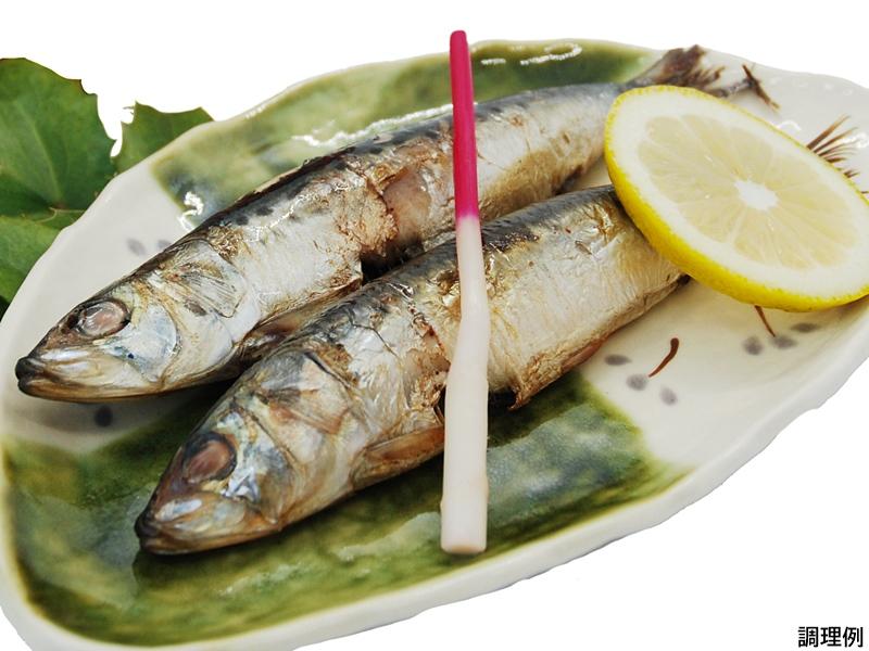 【栄養満点!オメガ3脂肪酸もたっぷり☆】 真いわし丸干し(5尾)