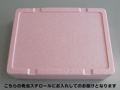 【期間限定】 桜セット (送料別)