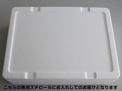 【水産物応援商品・送料無料】 山安ひもの(あじ・いか一夜干)セット
