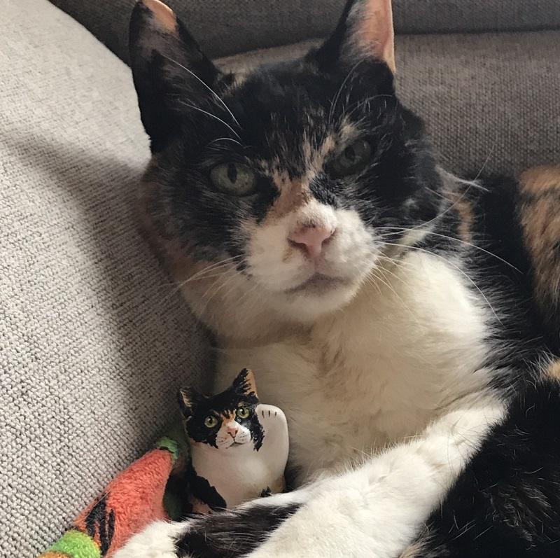 世界で一つだけ  『マイ招き猫 人招き猫』(左手あげ)