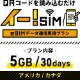 eSIM イー!SIM アメリカ/カナダ 30日:5GB