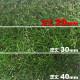 リアル人工芝 【芝丈20mm】【幅1m】【長さ2m】天然芝のような 庭 ガーデン 草 人芝 水はけ 人工芝マット テラス ベランダ