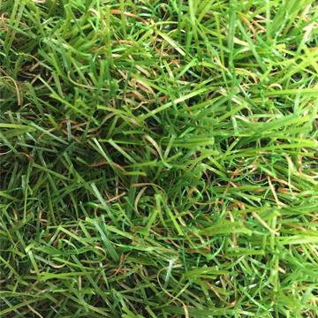 リアル人工芝 【芝丈20mm】【幅1m】【長さ3m】天然芝のような 庭 ガーデン 草 人芝 水はけ 人工芝マット テラス ベランダ