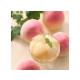 【店頭受取】桃のコンポートゼリー2個入
