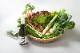 エビベジ野菜セット大 + 獺祭 純米大吟醸 磨き三割九分 720M 【ヤマトクール便でお届け・送料込】
