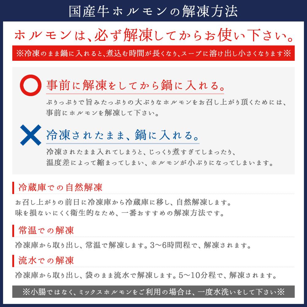 博多もつ鍋2人前(特選ミックスホルモン使用)/mnz2