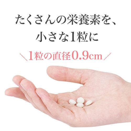 【単発】はじめての葉酸 お得な6袋セット/送料無料 (180日分)