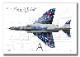 """Top view 横向き"" F-4EJ ""改"" ファントム� ""07-8436"" Phantom Forever (A2サイズ Prnts)"