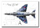 """Top view 横向き"" F-4EJ ""改"" ファントム� ""07-8436"" Phantom Forever (A3サイズ Prnts)"