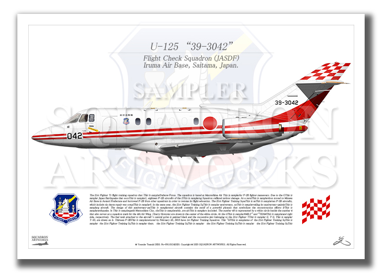 "U-125 飛行点検隊 ""39-3042"" (A4サイズ Prints)"