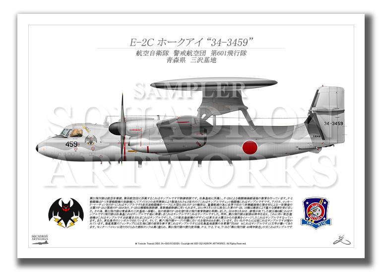 """E-2C ホークアイ 第601飛行隊 """"34-3459"""" (A3サイズ Profiles)"""
