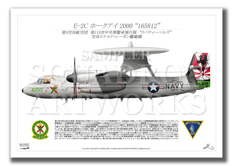 """E-2C ホークアイ 2000 VAW-115 """"リバティーベルズ"""" 2017 Showbird """"165812"""" (A3サイズ)"""