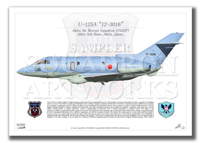 """U-125A 秋田救難隊 """"12-3016"""" (A2サイズ Profiles)"""