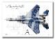 """Top view 横向き"" F-15DJ イーグル 飛行教導群 ""92-8094"" (A2サイズ Prnts)"