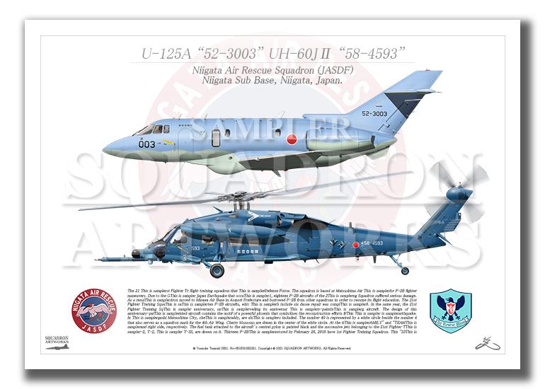 U-125A/UH-60J� 新潟救難隊 2機ver (A4サイズ Prints)