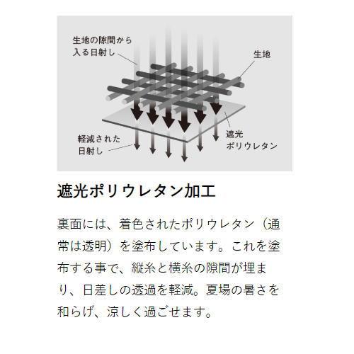 【9月再入荷予定】ゼインアーツ/ゼクーM PS-003