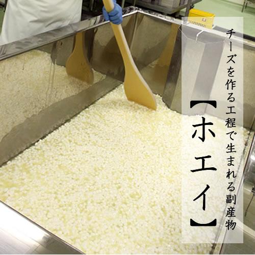 生ホエイ仕込み 全粒ハースブレッド|小麦の薫りがぶわっと広がる