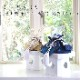 白粋-HAKI- プレミアム 西陣織紗綾形兜飾り