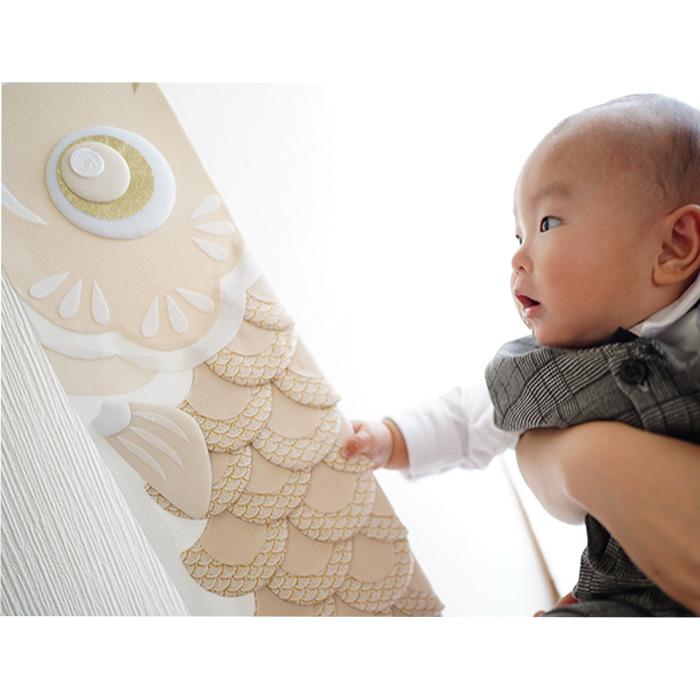 白粋-HAKI- ウォールデコレーション鯉のぼり [Sサイズ] /五月人形 初節句 こいのぼり