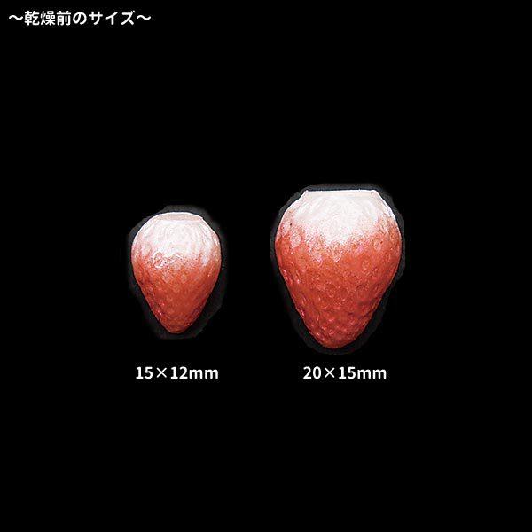 粘土レジン用型 『クレイジュエリー型抜き いちご立体ミニ 389』 日清アソシエイツ