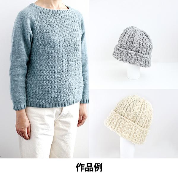 秋冬毛糸 『空気をまぜて糸にしたウールアルパカ 2番色』 DARUMA ダルマ 横田