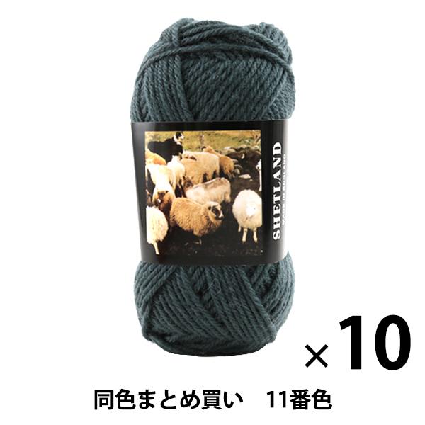【10玉セット】秋冬毛糸 『SHETLAND(シェットランド) 11番色』 Puppy パピー【まとめ買い・大口】