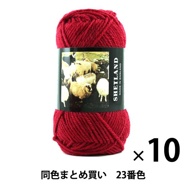 【10玉セット】秋冬毛糸 『SHETLAND(シェットランド) 23番色』 Puppy パピー【まとめ買い・大口】