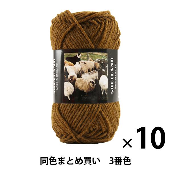 【10玉セット】秋冬毛糸 『SHETLAND(シェットランド) 3番色』 Puppy パピー【まとめ買い・大口】