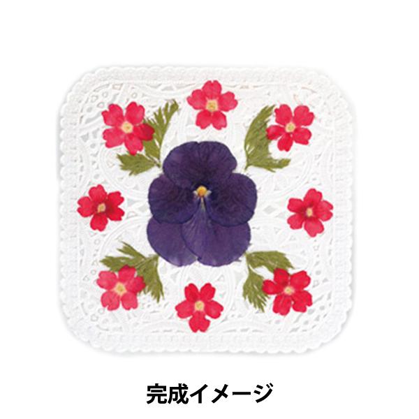 押し花コースターキット<スクウェア> /KT050