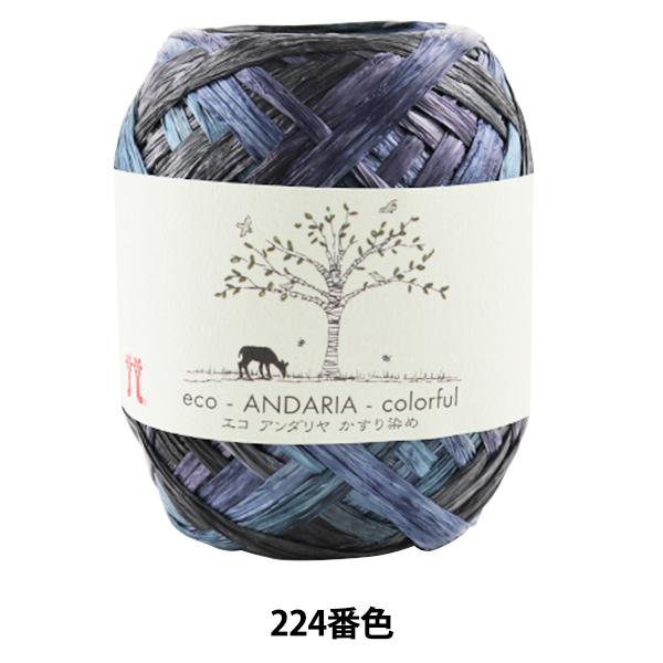 手芸糸 『エコアンダリヤ かすり染め 224番色』 Hamanaka ハマナカ
