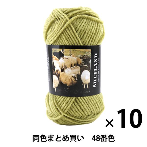 【10玉セット】秋冬毛糸 『SHETLAND(シェットランド) 48番色』 Puppy パピー【まとめ買い・大口】