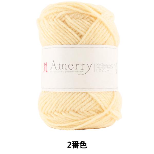 秋冬毛糸 『Amerry (アメリー) 2番色』 Hamanaka ハマナカ