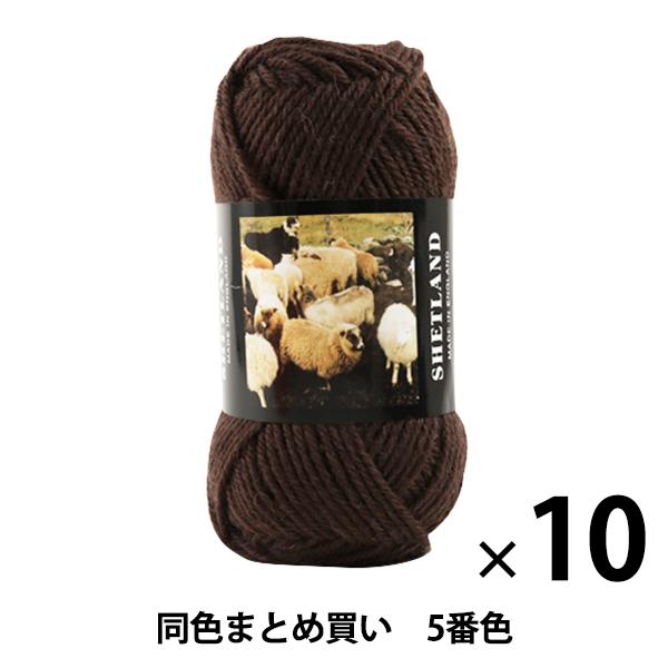 【10玉セット】秋冬毛糸 『SHETLAND(シェットランド) 5番色』 Puppy パピー【まとめ買い・大口】