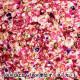 【数量5から】生地 『20オックス Plantica 花柄 ピンク』