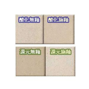 粘土 『粘土 並信楽土 特漉粘土 (特こし) 5kg S-1-5』