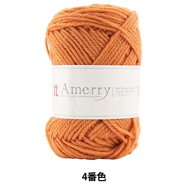 秋冬毛糸 『Amerry (アメリー) 4番色』 Hamanaka ハマナカ