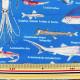【数量5から】生地 『ツイルプリント生地ツイル 深海魚 生地 布 入園 入学 インテリア B青』 COTTON KOBAYASHI コットンこばやし 小林繊維