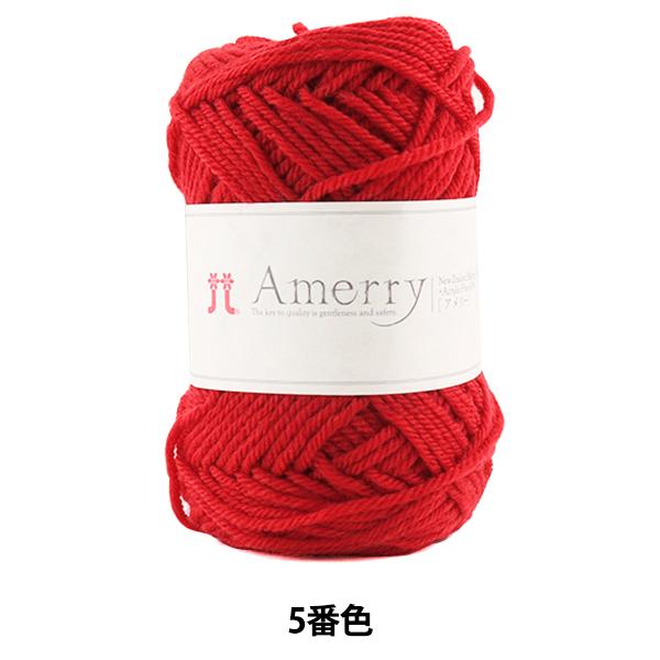 秋冬毛糸 『Amerry (アメリー) 5番色』 Hamanaka ハマナカ