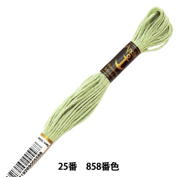 刺しゅう糸 『Anchor(アンカー) 25番刺繍糸 858番色』