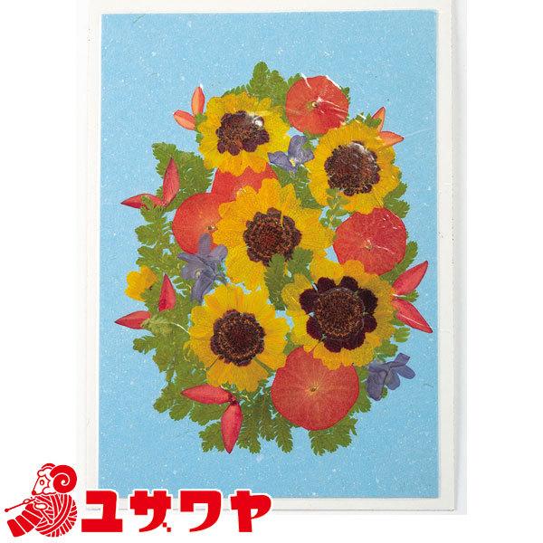 押し花キット 『はじめてさん 押し花絵キット ハルシャギクのお花畑』
