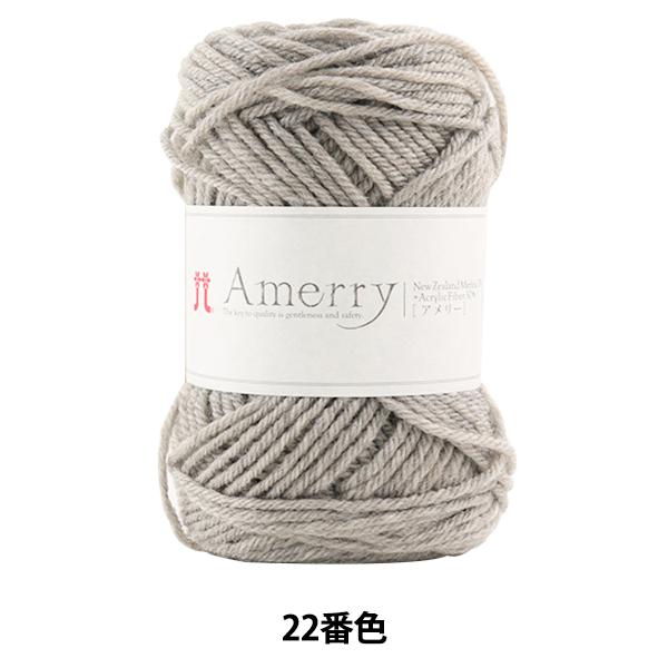 秋冬毛糸 『Amerry(アメリー) 22番色』 Hamanaka ハマナカ