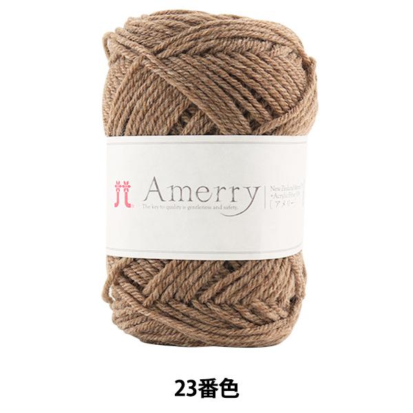 秋冬毛糸 『Amerry (アメリー) 23番色』 Hamanaka ハマナカ