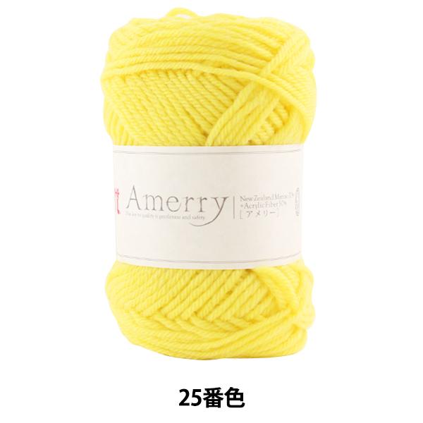秋冬毛糸 『Amerry (アメリー) 25番色』 Hamanaka ハマナカ