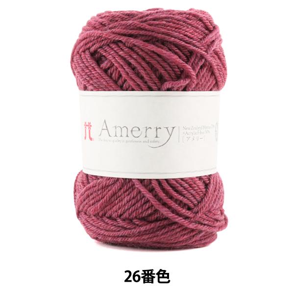 秋冬毛糸 『Amerry (アメリー) 26番色』 Hamanaka ハマナカ