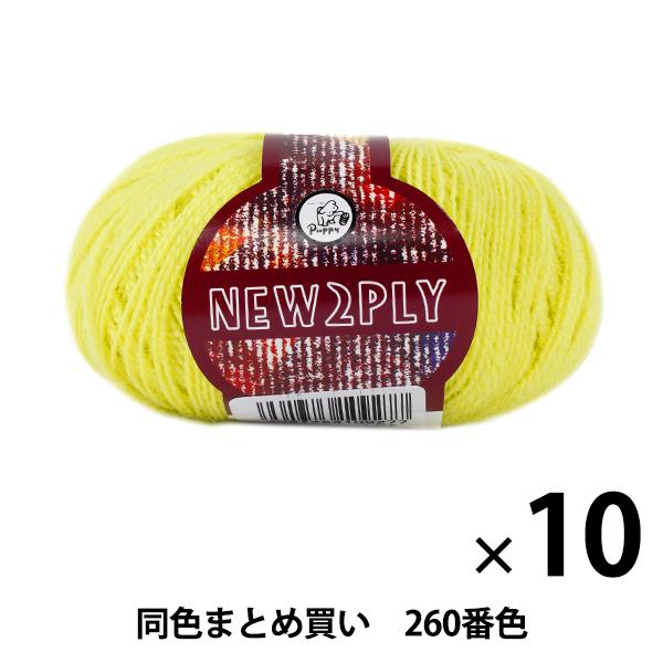 【10玉セット】秋冬毛糸 『NEW 2PLY(ニューツープライ) 260番色』 Puppy パピー【まとめ買い・大口】