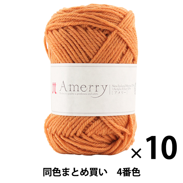 【10玉セット】秋冬毛糸 『Amerry(アメリー) 4番色』 Hamanaka ハマナカ【まとめ買い・大口】