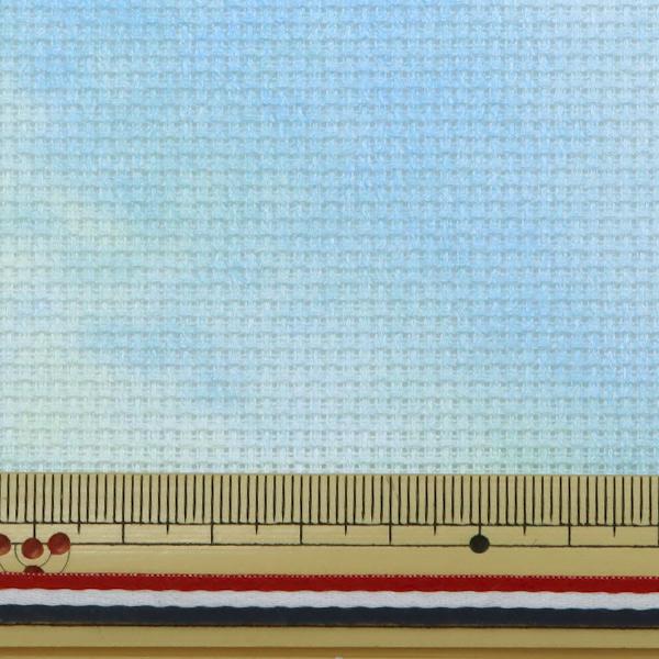 刺しゅう布 『Charles CRAFT PRINTED AIDA(プリント アイーダ) 14カウント 55目 747番色(DEW しずく)』 DMC ディーエムシー