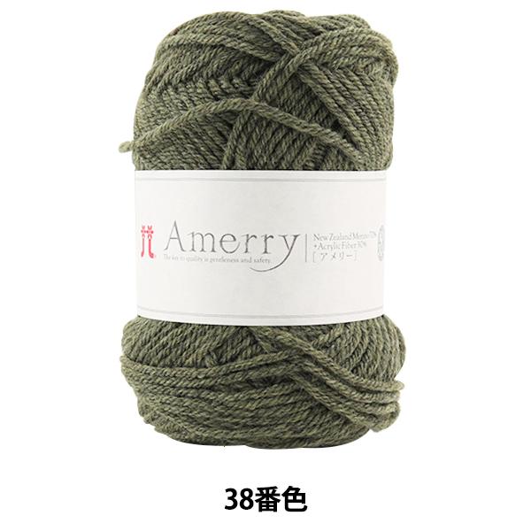 秋冬毛糸 『Amerry (アメリー) 38番色』 Hamanaka ハマナカ